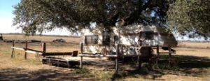 empty-camp